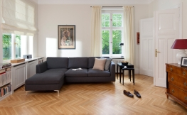 elektrokamine mit wasserdampf feuer. Black Bedroom Furniture Sets. Home Design Ideas
