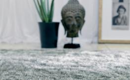 Schöne Langflor Teppiche