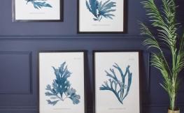 Bilder aufhängen – 3 stylische Ideen
