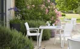 Zen-Garten: Tipps zur Anlage und Pflege