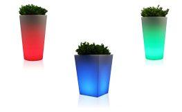LED im Blumentopf