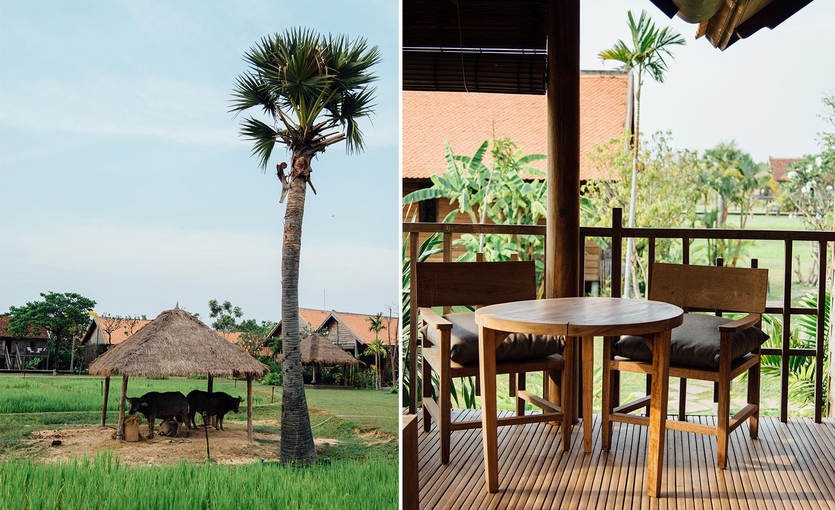 Wonderful Einfache Dekoration Und Mobel Authentischer Urlaub Im Designhotel Phum Baitang #5: Reisfelder Phum Baitang