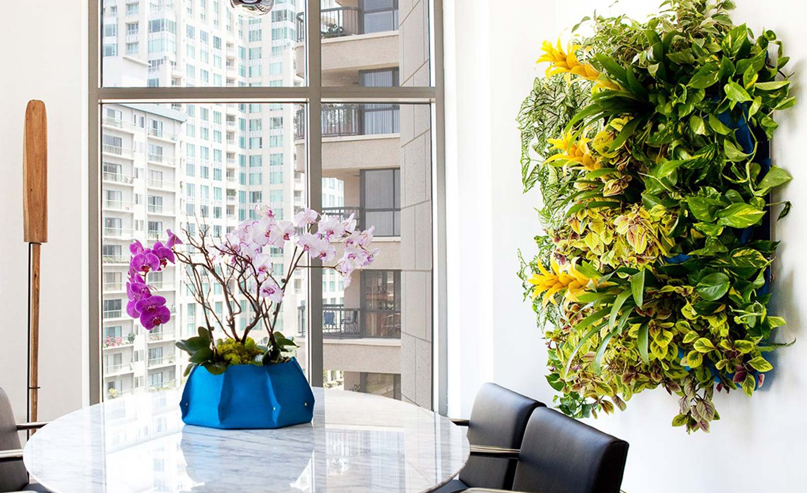 Wanddeko Zimmerpflanzen