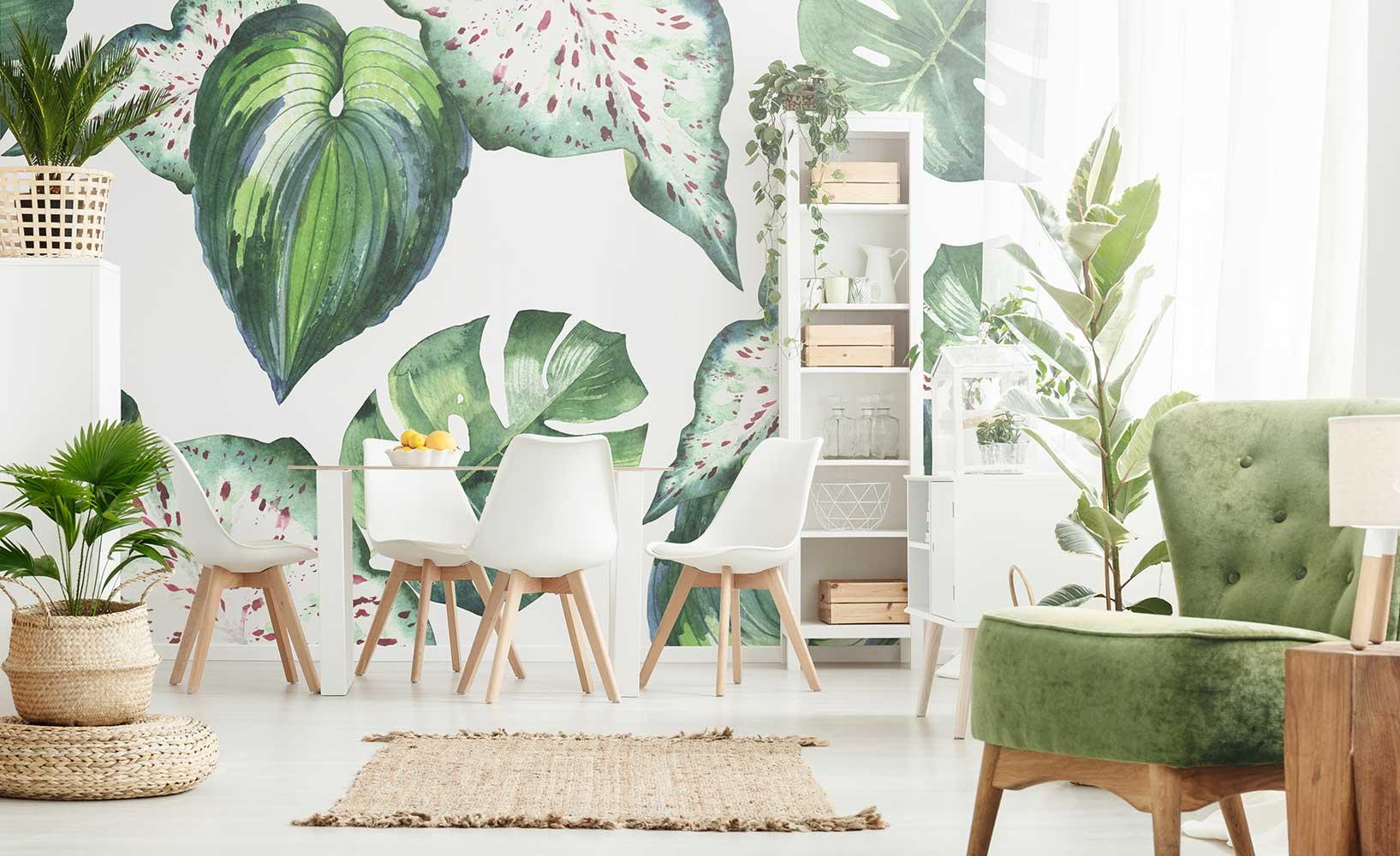 Zimmerpflanzen - nützlich oder pflegeleicht