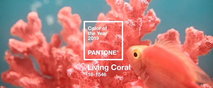 Trendfarbe des Jahres 2019